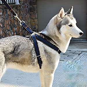 XIAO No-Pull Acolchado Ajustable Chaleco Arnés para Perro ...