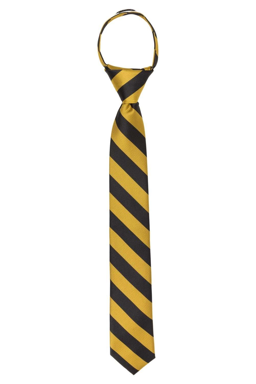 Jacob Alexander Stripe Woven Boys 14'' College Striped Zipper Tie - Gold Navy