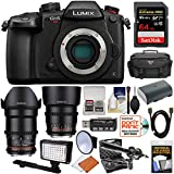 Panasonic Lumix DC-GH5S Wi-Fi C4K Digital Camera Body with 35mm & 85mm T/1.5 CINE Lenses + 64GB + Battery + Case + LED Light & Flash + Mic Kit