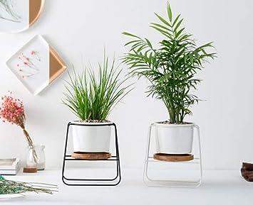 Better Way Keramik Pflanzgefass Mit Stander Orchideen Blumen