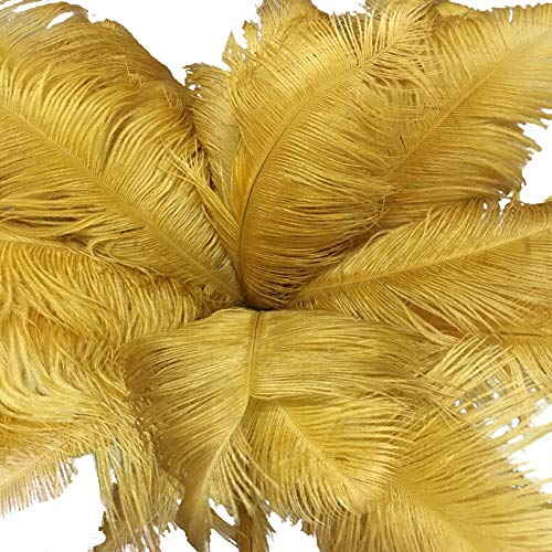 Lanpeed 5pcs Ostrich Feathers 22-24 inch (55-60cm) for Home Wedding Party Decoration -