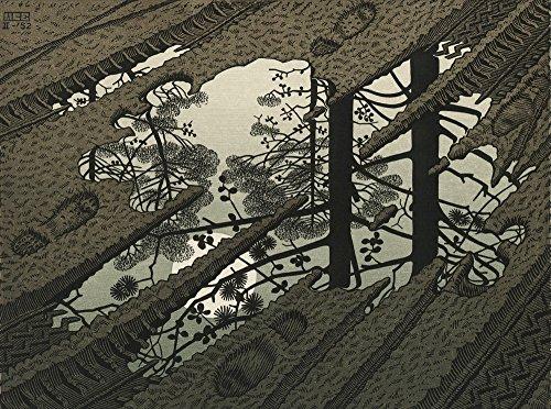 Berkin Arts M.C. Escher Giclee Canvas Print Paintings Poster Reproduction(Puddle) (Mc Escher Poster)