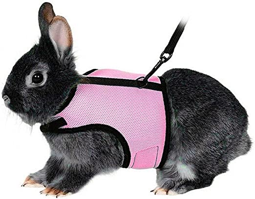 UEETEK Arnés suave con plomo para los conejos mascotas conejo poco ...