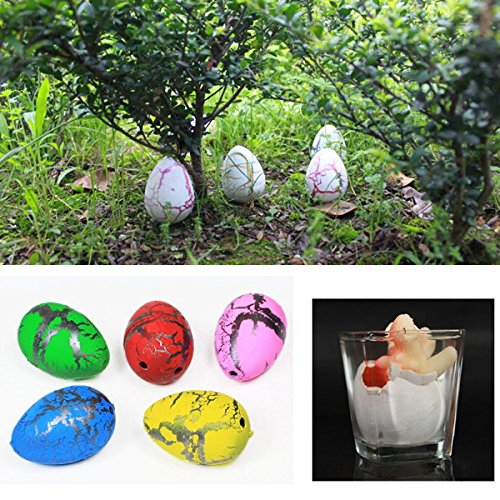Science & Discovery Toys - Hatch Animal Planet Surprise Animals Easter Science - 2x Medium Funny Magic Growing Hatching Dinosaur Eggs Christmas Child Gifts 4×3.5cm - - 1PCs