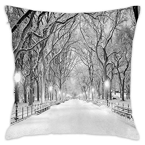 Podas Big View of Central Park in Winter Snowy Trees and The Walkway Digital Print Decorative Pillow Case Throw Pillows Covers for Couch/Bed 18 X 18 Inch Home -