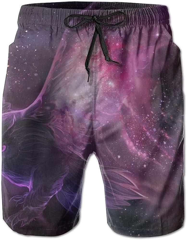 Mens Galaxy Owl Stars Quick Drying Moisture Perspiration Short Pants Swim Trunks