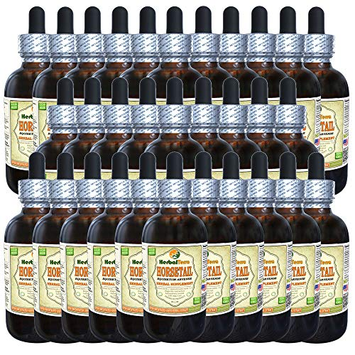 Horsetail (Equisetum Arvense) Tincture, Organic Dried Herb Liquid Extract (Brand Name: HerbalTerra, Proudly Made in USA) 30x2 fl.oz (30x60 ml)
