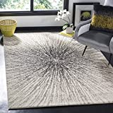 Safavieh Evoke Collection EVK228K Contemporary Burst Black and Ivory Area Rug (3′ x 5′) Review