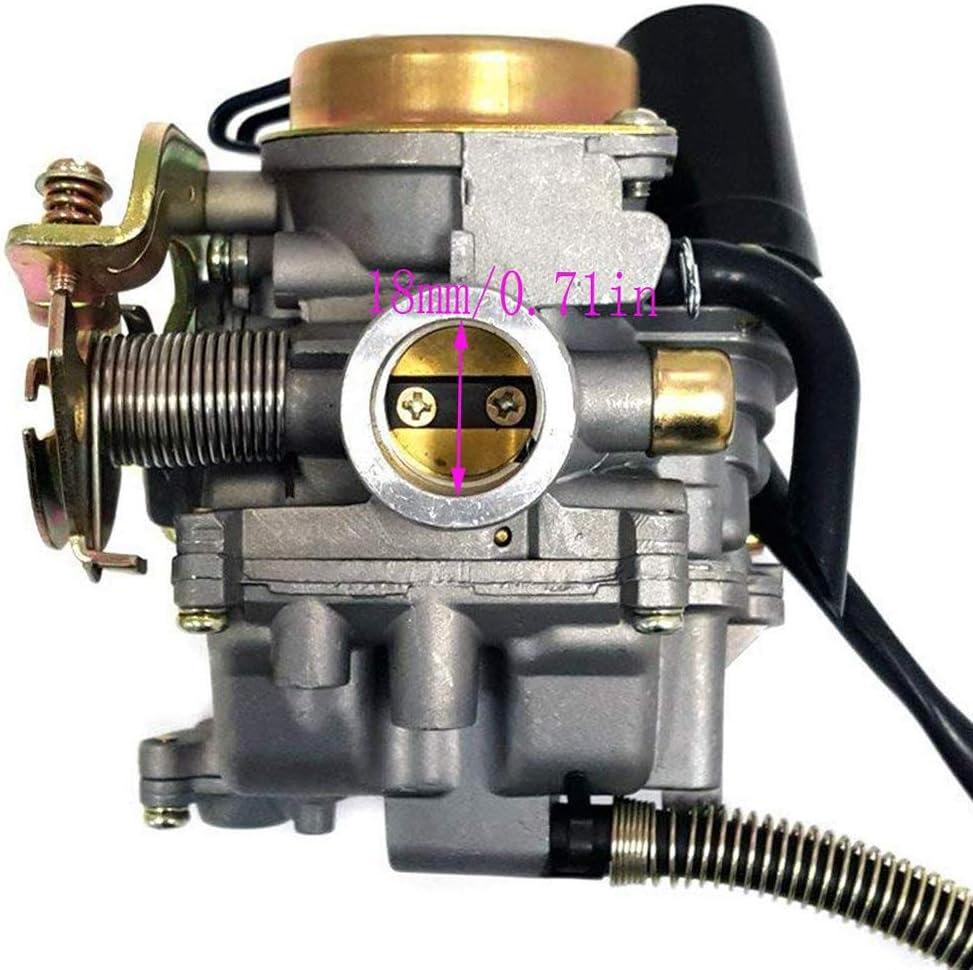 Festnight Carburateur Fit pour GY6 50CC 49CC 4 Temps Scooter Taotao Moteur 18mm Carb Filtre /à air collecteur Admission