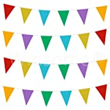 Winsome® 33 Feet Long 20 Flags Multi Colour PVC Plastic Bunting Banner Pennant Double Sided For Birthday Party Event Sporting Game Decoration