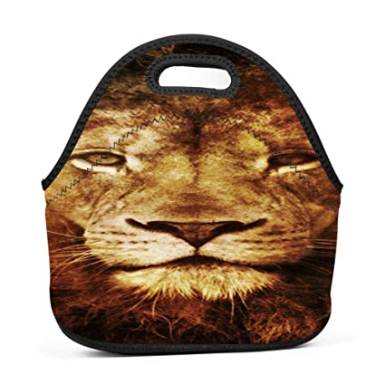 7feed9d2902c Amazon.com - dreambest Retro Lion Portrait Insulated Neoprene Lunch ...