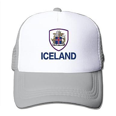 Amazon | アイスランド ICELAND ...