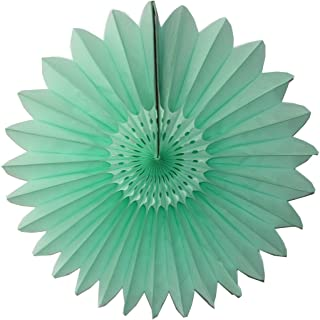 product image for Devra Party 6-Pack 18 Inch Tissue Paper Fanburst (Mint)