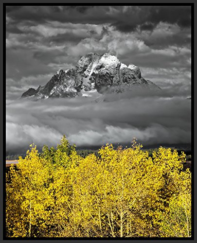 Mt. Moran with Aspens – Grand Teton National Park, Jackson Hole Valley, Wyoming, USA – Original Landscape Photography Framed Aluminum Metal Art Print for Office and Home Decor 12 by 15 Photograph