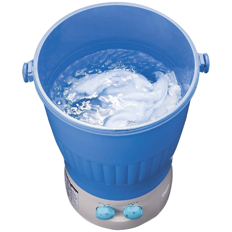 KOBWA 超音波ウォッシャー ミニ洗濯機 出張 USB洗浄機 旅行 携帯型 節水 子供衣類/タオル/下着/野菜/果物