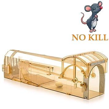 Maus Lebendfallen Professinonelle Mausefalle Menschlich Mausefalle