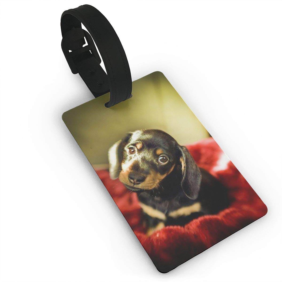 Dachshund Wiener Dog Cruise Luggage Tag For Suitcase Bag Accessories 2 Pack Luggage Tags