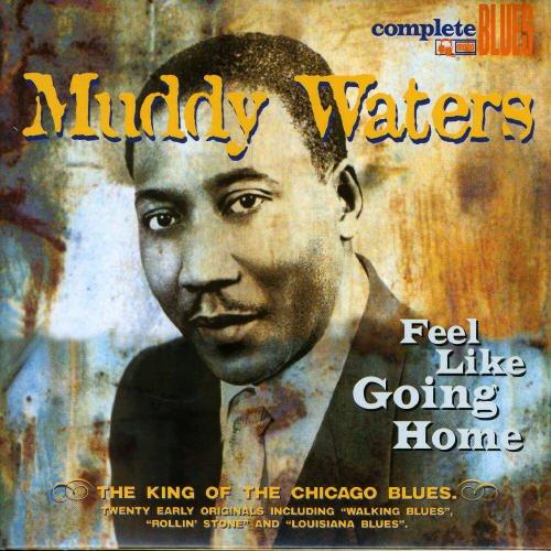 Muddy Waters - Feel Like Going Home - Zortam Music
