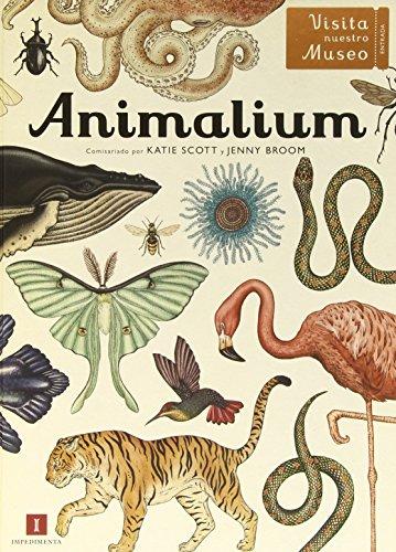 Descargar Libro Animalium Katie Scott