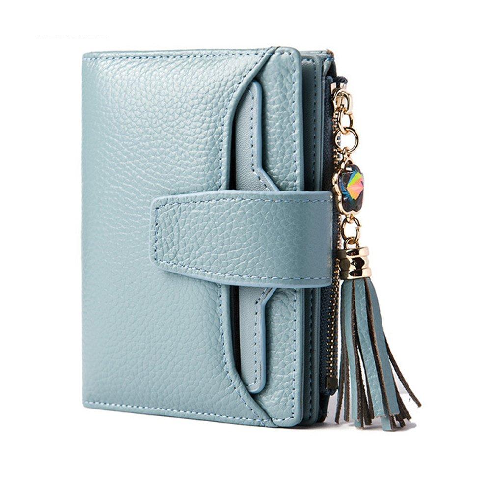 Damen Geldbörse Klein Brieftasche Große Kapazität Leder Portemonnaie mit 19 Kartenfächer (Blau)