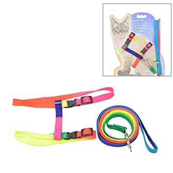 Colorful Nylon Pet Cat Adjustable Harness Lead Leash Collar Belt, Length: 120cm : Pet Supplies