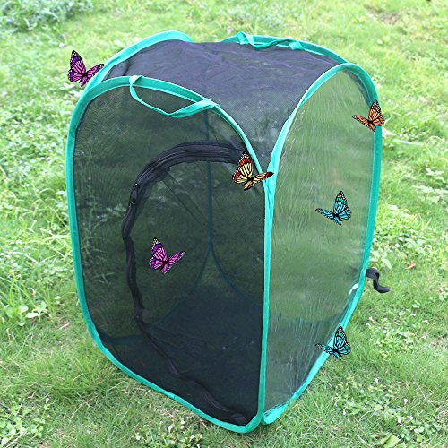 Trasfit 24 Inch Collapsible Insect and Butterfly Habitat Terrarium, Easy Zip-Open Door(Black)