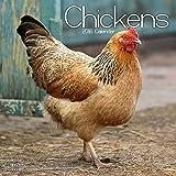 Chickens Calendar - 2016 Wall calendars - Animal Calendar - Monthly Wall Calendar by Avonside
