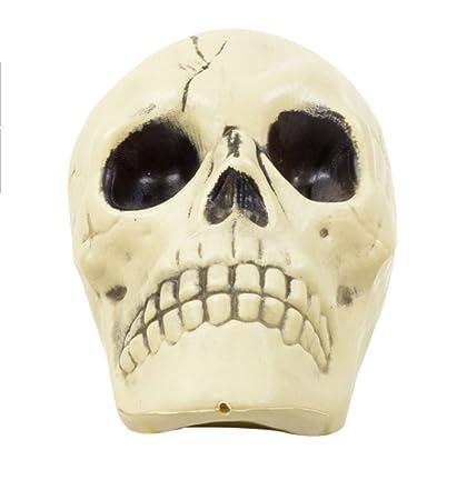 brand new b32e3 ae542 Amazon.com  Greenbrier International Plastic Skull  Toys   Games