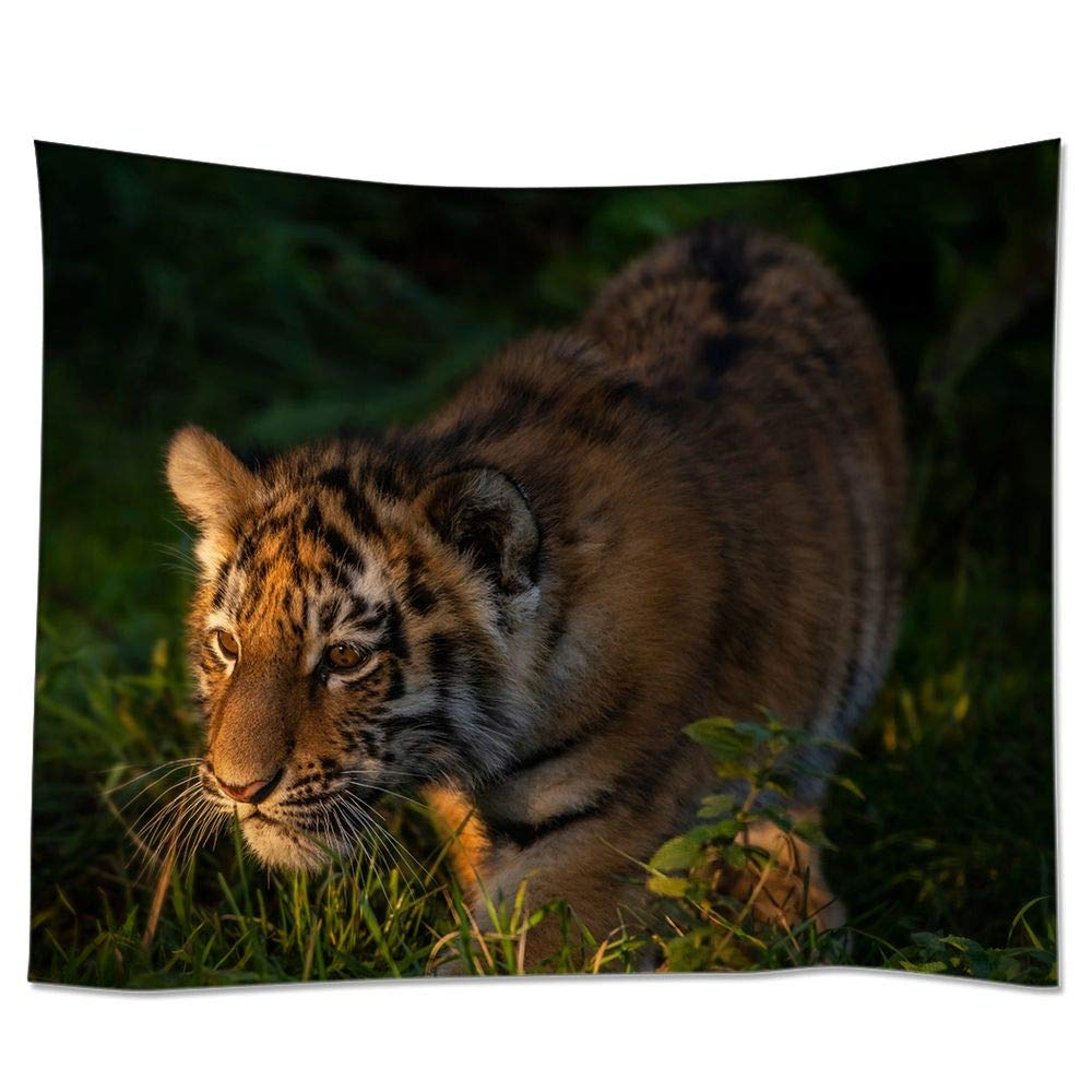 HommomH 60x80 Inches Tiger Cub Wall Tapestry Art Home Decor Polyester Hanging for Living Room Bedroom Bathroom Kitchen Dorm Looking for Food in The Forest by HommomH