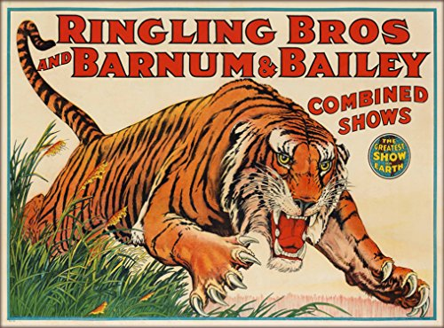 (A SLICE IN TIME Ringling Brothers & Barnum & Bailey Circus Tiger The Greatest Show on Earth Vintage Circus Travel Home Collectible Wall Decor Advertisement Art Poster Print. Measures 10 x 13.5 inches)