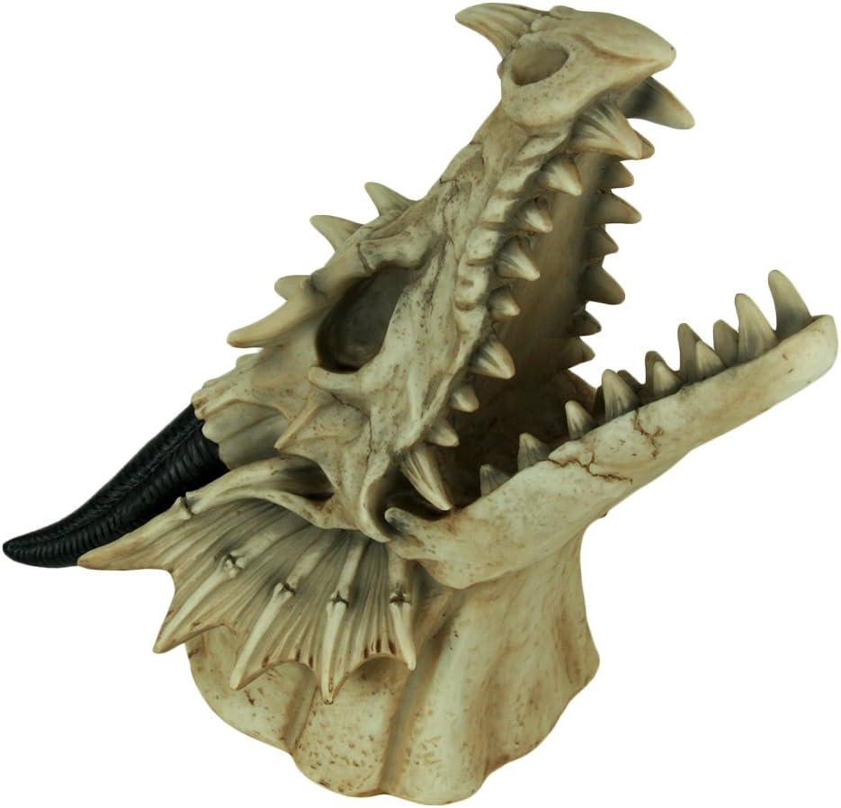 Monture de troph/ée Fantasy Head Cr/âne de dragon fix/é au mur World of Wonders HD49785 D/écor de donjon gothique