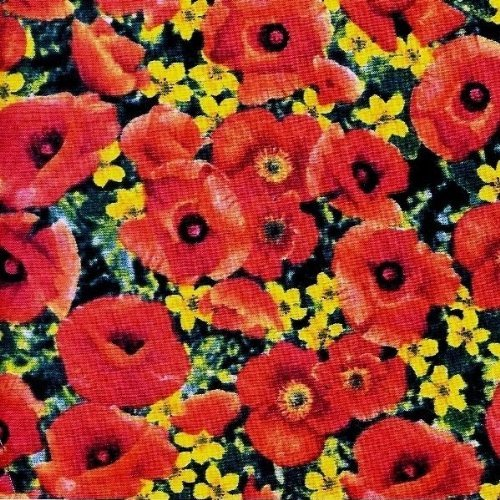 - 1/2 Yard - Wizard of Oz Poppy Field 100% Cotton Fabric (Great for Quilting, Sewing, Craft Projects, Throw Pillows & More) 1/2 Yard X 44