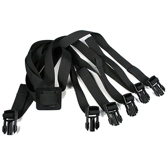 Pro Dog Harness