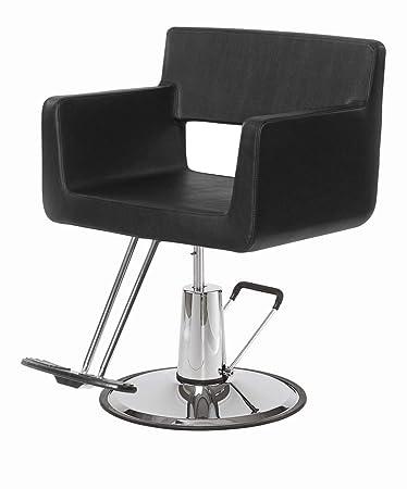 sc 1 st  Amazon.com & Amazon.com: BR Beauty Rosa Salon Styling Chair (Black): Beauty