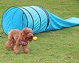Universalwant New 15' Pet Dog Training Agility