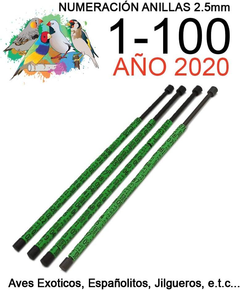 NestQ 100 Anillas Canarios Españolitos Jilgueros Exotiocs 2020 Color Verde Federativo Policromo Grabado Laser Cerradas 2.5 mm Numeradas con Año Marcado 2 Tiras con Numeración de 1-100