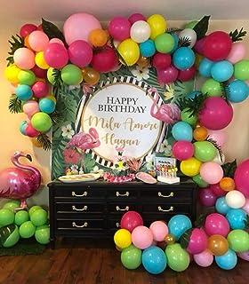 Amazon.com: Kit de arco de guirnalda de globos para ...