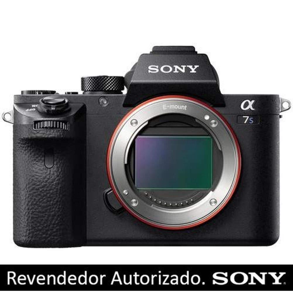 Sonyアルファa7siiミラーレスデジタルカメラ(ボディのみ) + Rode VideoMic Pro VMP withライコートLyre Shockmount + Sony 64 GBメモリカード+デジタルTreasuresクリエイティブ& OfficeソフトウェアSuite for PC   B01AV849UW