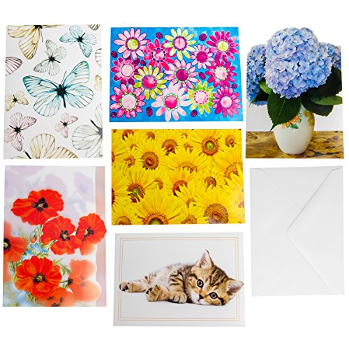 60ct All Occasion Assorted Blank On The Inside Gift Cards & Envelopes Designer Greetings Notes Bulk Lot – ()
