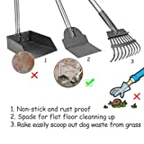 Upgraded Dog Pooper Scooper, Tray, Rake and Spade 3 Pack Poop Scoop Adjustable Long Handle Metal with Bin for Pet Waste Removal, No Bending Clean Up for Large and Small Dogs
