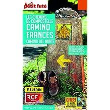CHEMINS COMPOSTELLE CAMINO FRANCES