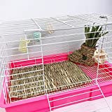 Cages - 40 28 1cm Hamster Straw Chew Grass Mat