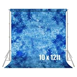 Julius Studio 10 ft X 12 ft Hand Dyed Blue Muslin Photo Video Photography Studio Fabric Backdrop Background Screen, JSAG130