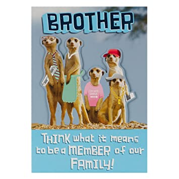 Hallmark Birthday Card for Brother Funny Meerkats Medium Amazon