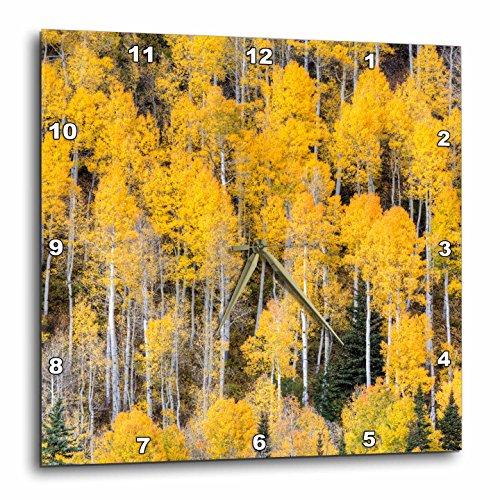 Colorado Rockies Clock - 3dRose Danita Delimont - Forests - USA, Colorado, Rocky Mountains. Aspen trees in autumn. - 10x10 Wall Clock (dpp_278748_1)