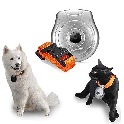 Waterproof Digital Pet Collar Cam Camera