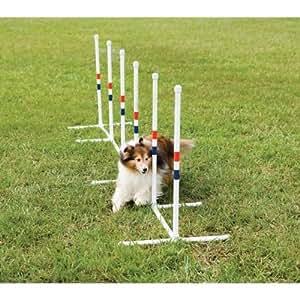 PetSafe Agility Weave Poles