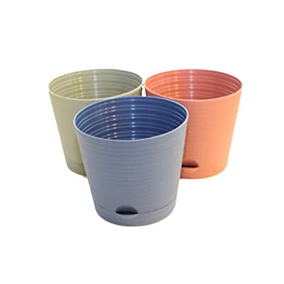 3 Pack Self-Watering Round Planter Pots - 6.25 inch with Spouted Saucer: Garden & Outdoor