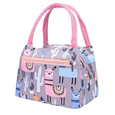 Mosichi Flamingo Cactus Print Thermal Insulated Tote Lunch Picnic Bag Food Storage Pouch - Alpaca#: Kitchen & Dining