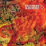 Great Misdirect [Vinyl]